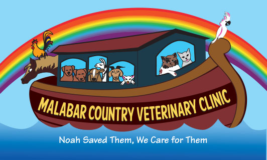 Veterinarians Palm Bay | Malabar Country Vet